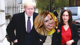 Může tahle blondýnka za rozvod exministra? Po boku Johnsona se objevovala už dřív