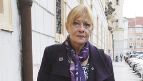 Zdravotní kolaps Jany Šulcové! Kvůli čemu nemohla převzít cenu?