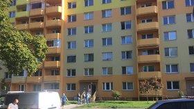 V Budějovicích vypadla matka s batoletem z okna: Dítě nepřežilo