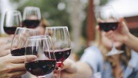 Vinobraní na Andělu: K ochutnání budou moky z Čech, Moravy i exkluzivních zahraničních vinic