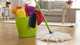 Vezměte to od podlahy! Poradíme vám, co funguje na lamino, koberec i parkety