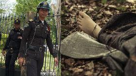 Pohřešovaní manželé v Thajsku nalezeni mrtví. Vraždu objednal manželčin bratr