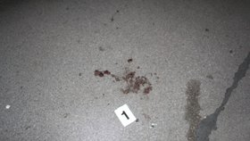 Brutální útok na Žižkově! Muž bezdůvodně zaútočil na kolemjdoucí, jeden skončil v umělém spánku