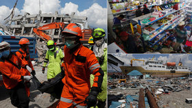 Tsunami s tisícem mrtvých nedá vědcům spát. Dívka katastrofu přežila na sloupku
