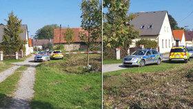 Tajemná vražda v Jankovské Lhotě: Co stálo za chladnokrevnou popravou?