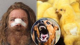 Sousedův pes mu sežral kuřata. Muž si to šel s majitelem vyřídit sekerou