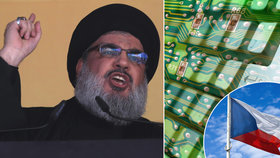 Tajná služba BIS odhalila hackery Hizballáhu. Oběti vábili na falešné profily dívek