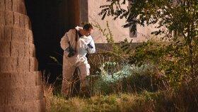 Mrtvý u garáží byl zavražděný! Podezřelého už mají, pořezal další ženu a napadl policistku