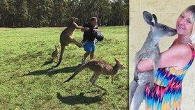 Linda bránila muže před agresivním klokanem. Sama skončila s protrženou plící