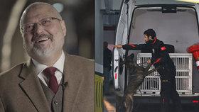 """""""Brutální a úkladná,"""" popsala zpravodajka OSN smrt novináře. Saúdové bránili i ve vyšetřování"""