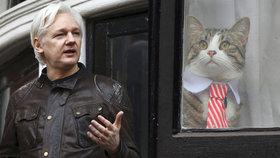 Assange si musí začít platit složenky a uklízet po kočce. Prohrál soud s Ekvádorem