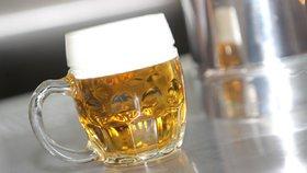 Českého piva bude méně? Odborník prozradil, jak klima ovlivní chmel
