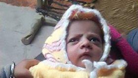Kojící matce vytrhla opice dvanáctidenní miminko: Chlapečka zabila!