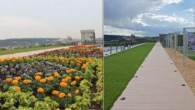 Levitující zahrada zdobí střechu muzea na Letné: Dokazuje přítomnost zemědělství v Praze