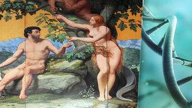 Adam a Eva opravdu existovali. Všichni lidé jsou potomci jednoho páru, tvrdí vědci