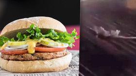 U burgerů grilovali krysu. Zaměstnanci restaurace se bavili zvrhlou zábavou