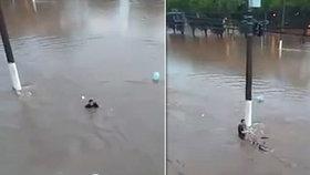 Cyklistu smetla blesková povodeň: Svědci natočili jeho smrt