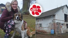 Z vepřína bude azyl pro psy: V útulku Dogsy si můžete adoptovat i kozu nebo berana