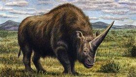 """Bájné zvíře skutečně existovalo? Po Rusku kdysi pobíhal """"sibiřský jednorožec"""""""