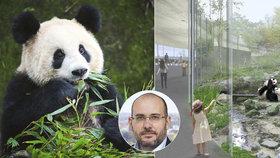 Čínské pandy jsou podle Prahy příliš drahé. Od začátku se počítalo s tím, že v pavilonu mohou být jiná zvířata