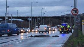 Tragické ráno v Braníku: Ženu srazilo auto, na místě zemřela. Přecházela mimo přechod