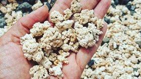Písek v dovolenkovém ráji vypadá jako popcorn. Pláž fascinuje každého návštěvníka