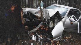 Řidič vyjel ze silnice a narazil do stromu. Nehodu nepřežil