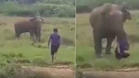 Hrůzné záběry: Muž chtěl zhypnotizovat slona, ten ho před zraky rodiny udupal k smrti!