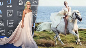 Zpěvačka Lady Gaga v slzách: Umírá mi můj andílek, šokovala