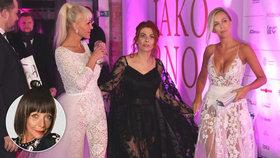 Ples jako Brno očima Františky: Hogo fogo panoptikum za všechny prachy