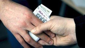 Finanční analytický úřad hlásí rekord. Loni zajistil 7,5 miliardy, i z korupce a terorismu