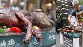 Vegani grilovali na ulici psa. Šokem chtěli veřejnost odradit od konzumace masa