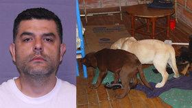 Veterinář pašerák voperoval heroin do štěňat, skončil v base