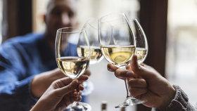 Slavnosti vína v Běchovicích: Nechte se pozvat na košt toho nejlepšího z tuzemských vinic
