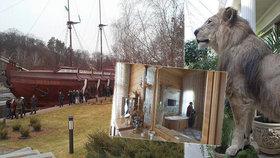 Zlaté kohoutky, květináč z krokodýla i soukromé kino: Jak dopadl palác Janukovyče?