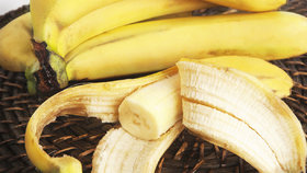 Banány jsou nemocné a možná brzy zmizí z regálů. Řetězce mají pro zákazníky vzkaz