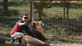 Takhle už ne: Michala P. (†33) roztrhal lev, ministerstvo chystá na chovatele bič