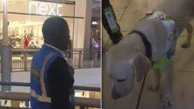 Ochranka vyhodila nevidomého ze supermarketu: Měl s sebou totiž slepeckého psa!