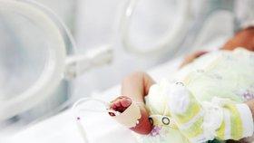 V nemocnici zemřelo za jediný den 11 novorozenců. Zabila je zřejmě výživa