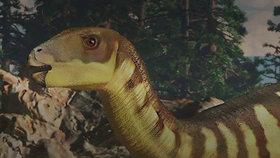 V Austrálii byl objeven nový druh dinosaura. Velký byl jako klokan