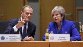 Tusk chce umožnit odklad brexitu na červen. Museli by souhlasit ale i Češi