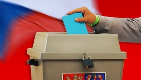 Jak volit aneb rady, jak postupovat u voleb