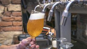 Piva z celé republiky na jednom místě. Parukářka pohostí tradiční pivobraní