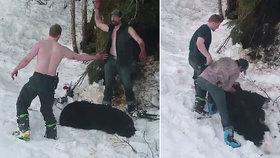 Hrůzné záběry: Otec se synem popravili spící medvědici i s mláďaty a pak si plácli!