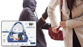 Průzkum ukázal: Na kolik přijde ukradená kabelka? O tolik peněz nás navíc připraví vyřizování dokladů