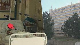 Nemocnice nechala Evu (†64) ležet na chodbě: Následoval nekompromisní trest!