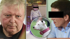 Vlastíka (†1) zabil nevychovaný pes! Soudní znalec promluvil o přerovské tragédii