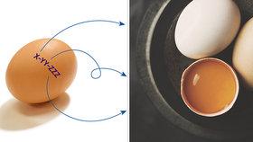 """Umíte """"číst"""" skořápku? A proč vejce skladovat špičkou dolů? Tohle vás překvapí!"""