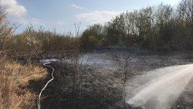 Ve Štěrboholech hořel palouk. Vyšetřovatel udělil pokutu, hrozí až 25 tisíc