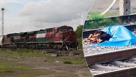 Věrný pes nepustil záchranáře k tělu svého pána:  Muž zemřel pod koly lokomotivy